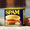 Contact Form 7のフォームから迷惑スパムメールが来るのを防ぐには?